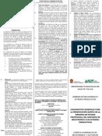 Memoria de estadía Ingeniería Mecatrónica y Sistemas Productivos V.2014[1]Lineamientos-1.pptx