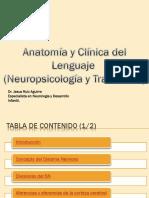 Anatomía y Clínica del Lenguaje
