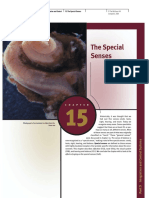 15 the Special Senses1 DP 4 (Hal 527 540)