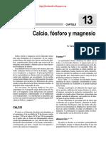 Los Minerales PDF Bueno