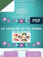Variacion en Los Niveles de La Lengua