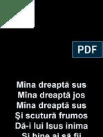 Mina Dreapta Sus