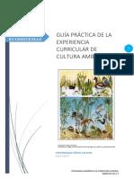 GUÍA-PRÁCTICA-02