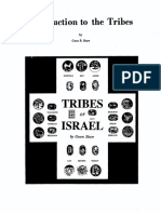 Introduction to the Tribes
