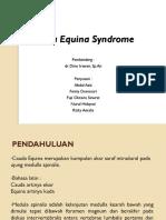 Cauda Equina Syndrome.pptx