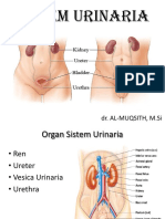1. Sistem Urinaria.pdf
