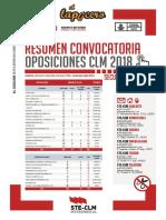 LAPICERILLO_RESUMEN_OPOS_2018_def.pdf