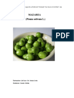 152417040-75479518-Mazarea.pdf