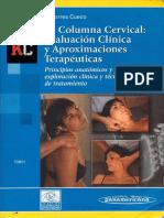 Columna Cervical. Evaluación Clinica y Tto.