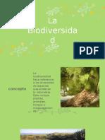 La Biodiversidad Saray Lee