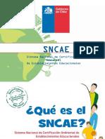 PPT-SNCAE2