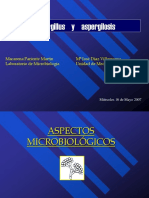 Aspergillus Aspergilosis