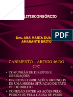 LITISCONSÓRCIO.pdf