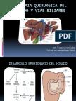 anatomiaquirurgicadelhigadoyviasbiliares