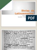 2.Etnias de Latinoamerica (2)