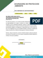 FORMATO 5. CARTA COMPROMISO DEL AUDITOR AMBIENTAL.docx