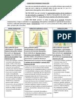 GUIÓN COMENTARIO PIRAMIDES POBLACION_rocio bautista.pdf