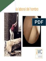09_lesion.pdf