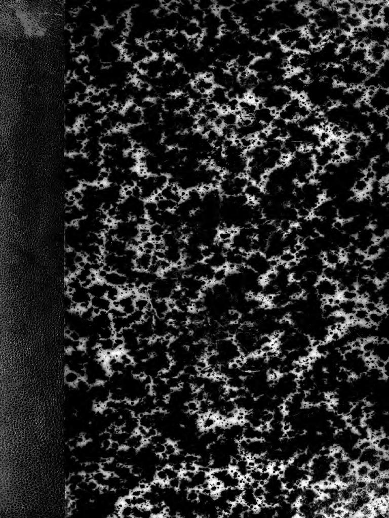 Mercado de Encaje Nottingham Blanco Ribete de Encaje de corte de 25 mm De Ancho Elegir Longitud