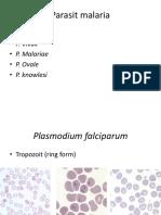 Asistensi Parasit Malaria Dan Filaria