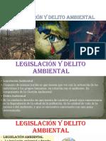 Legislación y Delito Ambiental final.pptx
