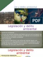 Legislación y Delito Ambiental Final