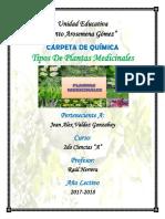 PLANTAS MEDICINALES MINI MONOGRAFIA.docx