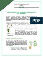bachillerato-formato-BIOLOGIA