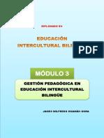 Módulo 3 Gestion Pedagógica en Eib