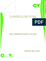 Curriculum Vitae Andres b.V.