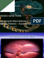 Clase 3 Bases genéticas