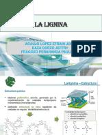 Sub Productos Lignina