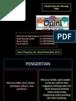 Presentation OPINI kelompok 10.pptx