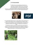 Cómo Producir Un Documental