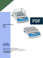psx_balances.pdf
