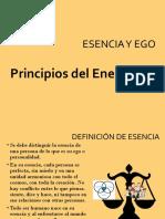 ESENCIA Y EGO en el Eneagrama