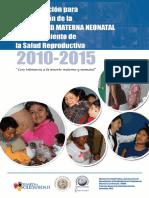 PLAN DE ACCION PARA LA REDUCCION DE LA MM Y NN Y MEJORAMIENTO DE LA SALUD REPRODUCTIVA.pdf