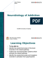 Neuro Biology Addiction,Ppt