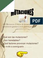 4to Medio Mutaciones