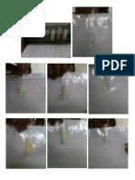 Gambar Uji Lipid Iokim