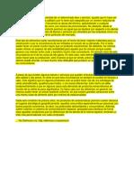 MARCAS PREMIUM.docx