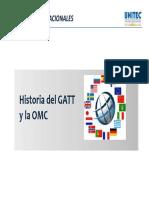 01 Historia Del Gatt-OMC
