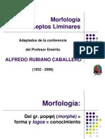 01 Morfología Conceptos Liminares