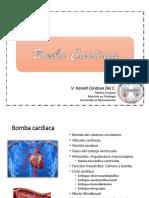 Bomba cardiaca fisio sanfer.pdf