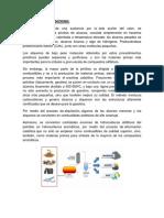 FISICA 2.1