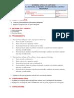 Guias de Practica 2.pdf
