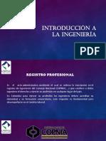 Registro Profesional