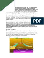Geologia Del Petroleo