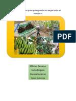 Análisis de Los Principales Productos Exportados en Honduras
