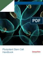 stem-cell-handbook-v2.pdf